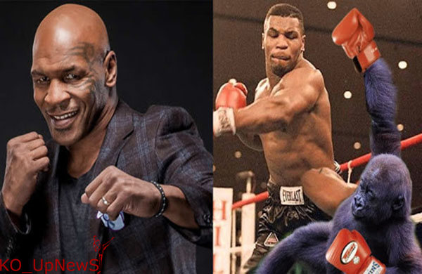 Boxing-275